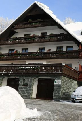 Готель «Gasperin Bohinj»1