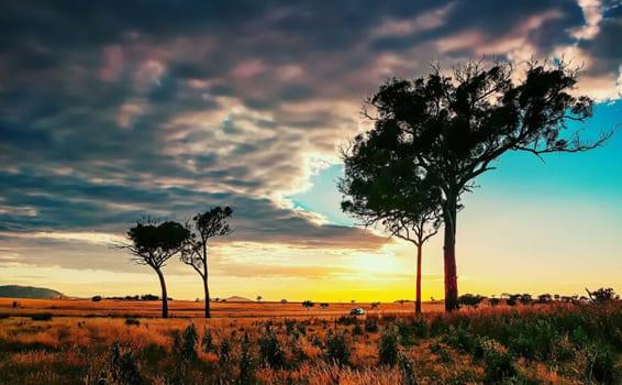 Природні заповідники і національні парки світу
