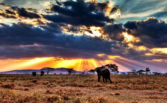 Национальные природные парки мира